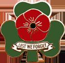 Irish Poppy Badge PNG (website)