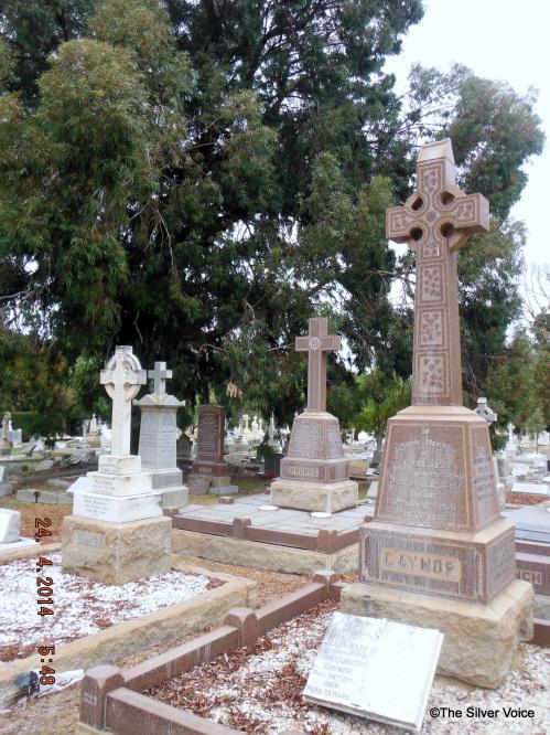 Gaynor Family Grave