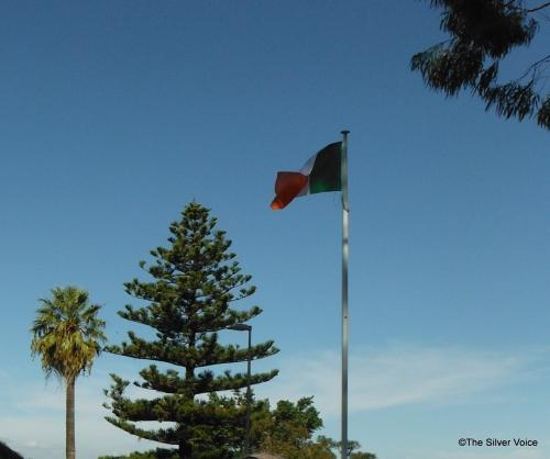 Irish tricolour far from home