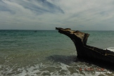 Sculpture as seen from near a wooden shipwreck on O'Connor beach.