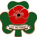 Irish Poppy Pin