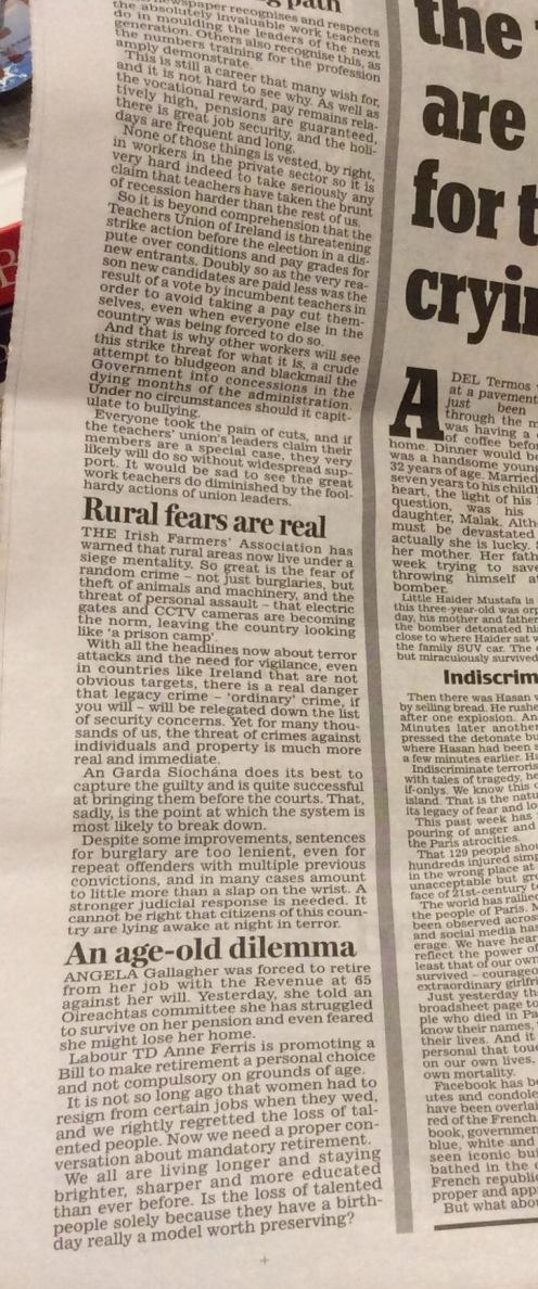 Opinion column Irish Daily Mail November 19 2015