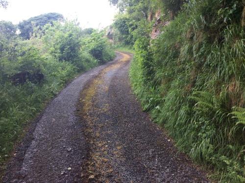 The lane up to Mulnamina